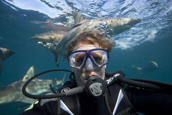 Aaron Gekoski se tomó varias selfies bajo el agua, rodeado de tiburones...