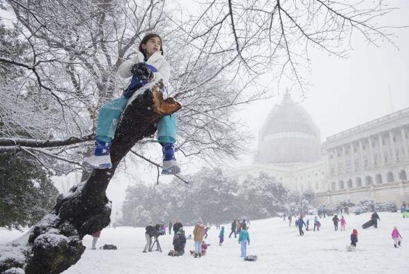 La niña Erin Johnson de ocho años se sube a un árbol mientras decenas de...