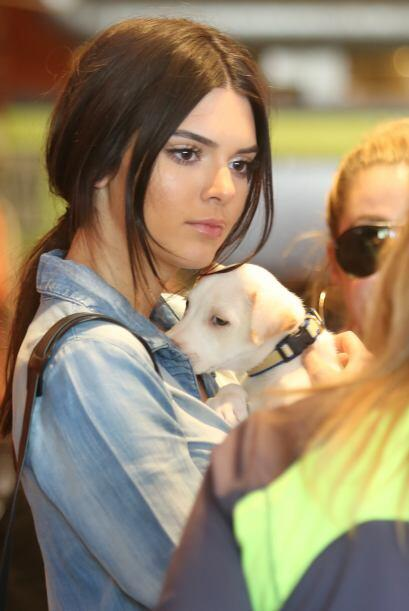 Kendall y Khloe quedaron maravilladas ante tanta ternura.