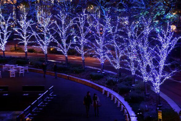 El ambiente navideño se respira en la ciudad de Tokio, Japón. Y es que s...